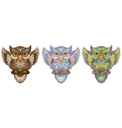 owl wall sticker set 3 artistic owls vector image