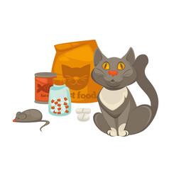 Pet vet veterinary cat food and treatment pills vector