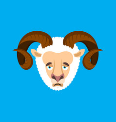 ram sad face avatar sheep farm animal sorrowful vector image