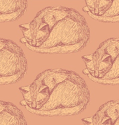 Sketch sleeping cat in vintage style vector image