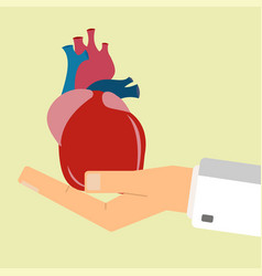 doctors hand hold human heart healthcare concept vector image