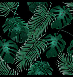 green tropical palm leaves and monstera jungle vector image vector image