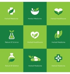 Herbal medicine icons on green background vector image