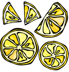 collection of lemons isolated on white background vector image