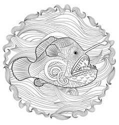 hand drawn angel fish with high details vector image