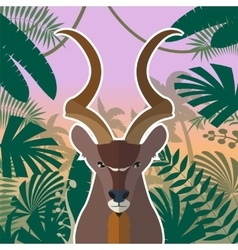 Koodoo on the Jungle Background vector image