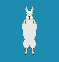lama alpaca scared omg animal oh my god emoji vector image