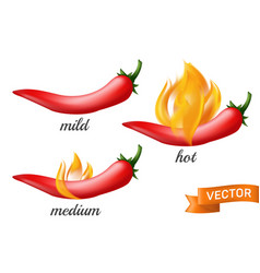 natural red hot chili pepper pod in fire flame vector image