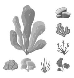 Botanical and flora logo vector