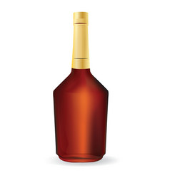Bottle of cognac or whiskey blank vector