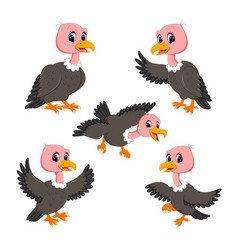 collection of the cute baby vulture vector image