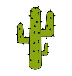 Natural cactus isolated icon vector