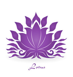 purple lotus plant zen meditation icon vector image