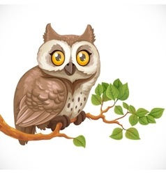 Cute owl sitting on a branch vector image vector image