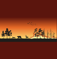 silhouettes of animals on wildfire background vector image