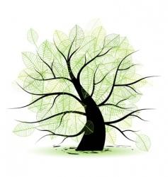 big old tree green leaf vector image vector image