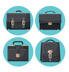 collection of briefcases businessman accessories vector image