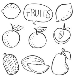 Doodle various fruit collection stock vector