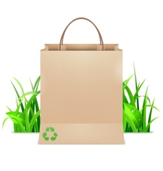 Eco Shopping Bag vector image