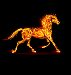 Fire horse in motion on black background vector