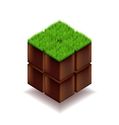Isometric cube from earth and grass vector image