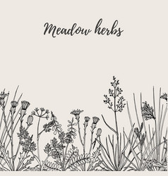 seamless floral background with hand drawn wild vector image