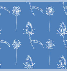 seamless pattern wild teasel and dandelions vector image