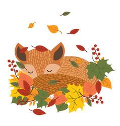 Stylized fox sleeping in fallen leaves a vector