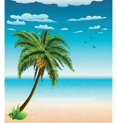 Summer beach and palm vector image