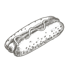vintage hot dog drawing hand drawn vector image