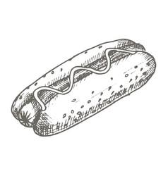 Vintage hot dog drawing hand drawn vector