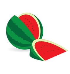 watermelons vector image