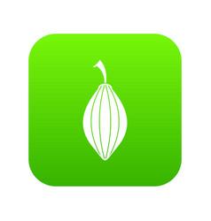 Black cardamom pod icon digital green vector