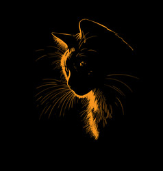 cat portrait silhouette in contrast backlight vector image