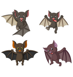 collection of the bat in the different posing vector image