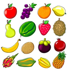 Fresh Fruits Doodle Style vector image
