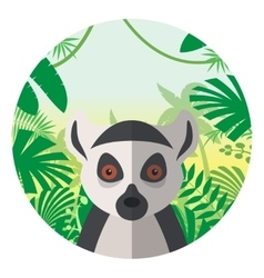 Lemur on the Jungle Background vector image