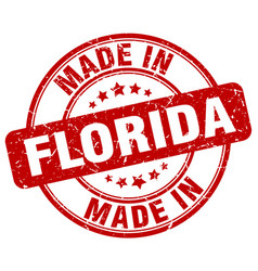 made in florida vector image