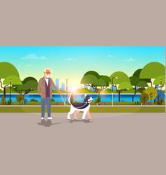 Senior man walking with husky dog urban city park vector