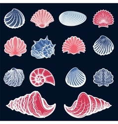 Colorful sea shell set vector