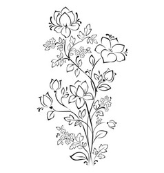 Floral pattern contour on white background vector