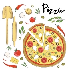 pizza isolated on a white vector image