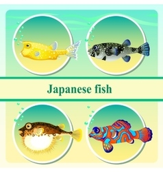 Set of four japanese sea fish vector