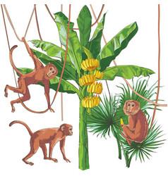 Tropical bananas palm textural seamless vector