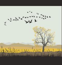 Autumn migration wild geese vector