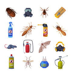 extermination insects equipment set vector image