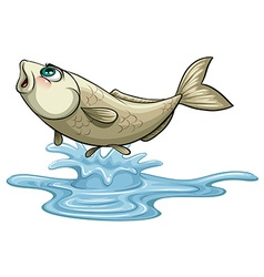 Fish jumping out on water surface vector