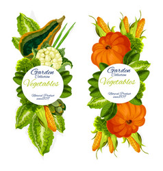garden vegetables icons farm harvest vector image