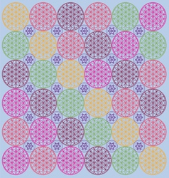 Life flower color background vector image