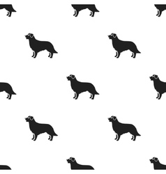 Retriever icon in black style for web vector image